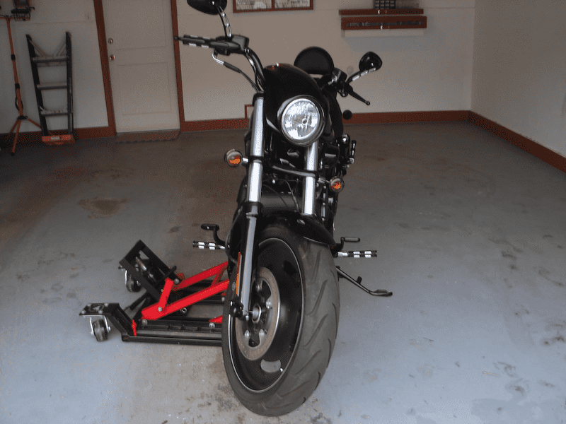 Lucy the Harley Night Rod Special